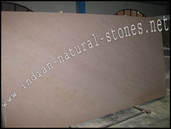 buff brown quartzite slabs from india